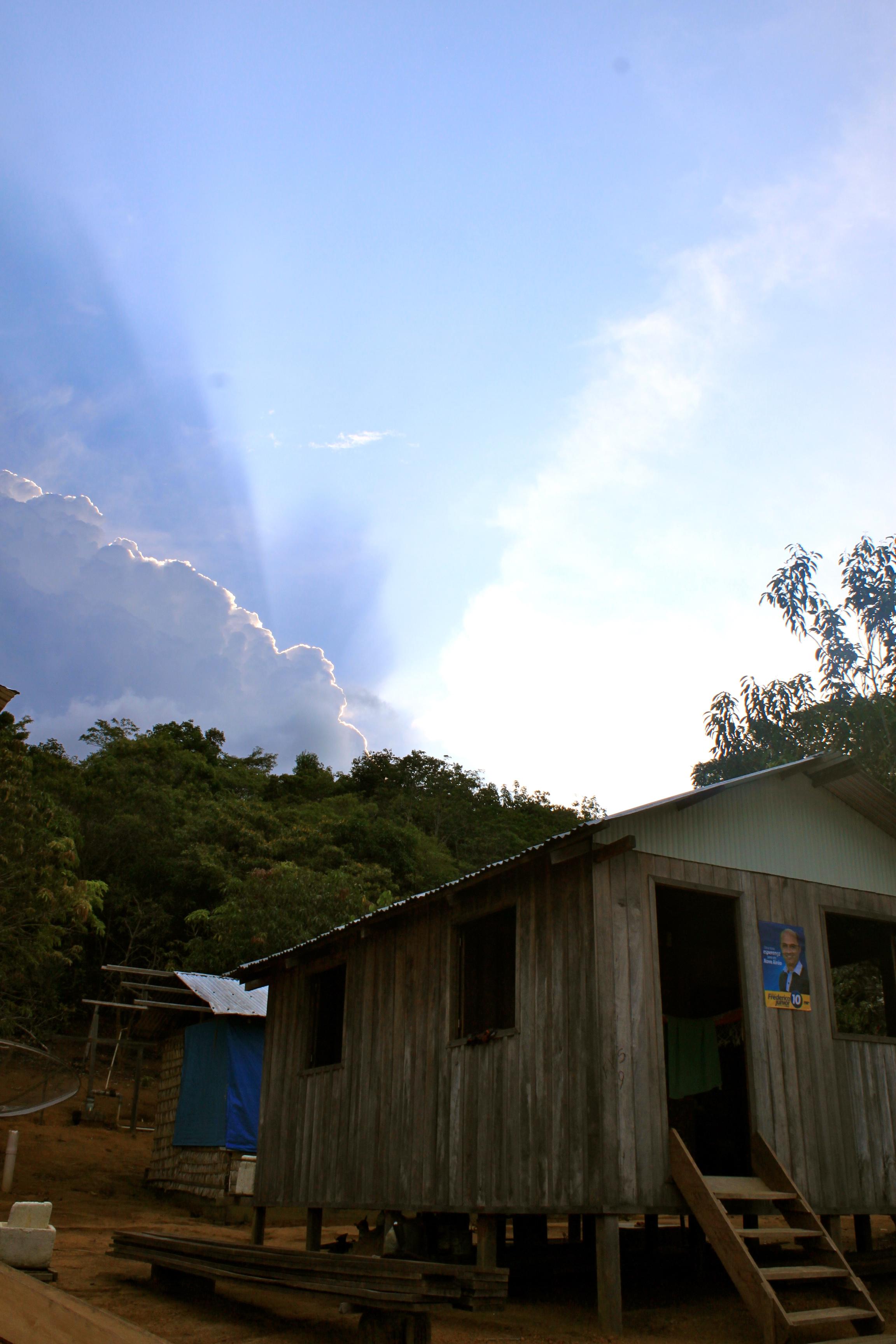 Tiririca Amazon