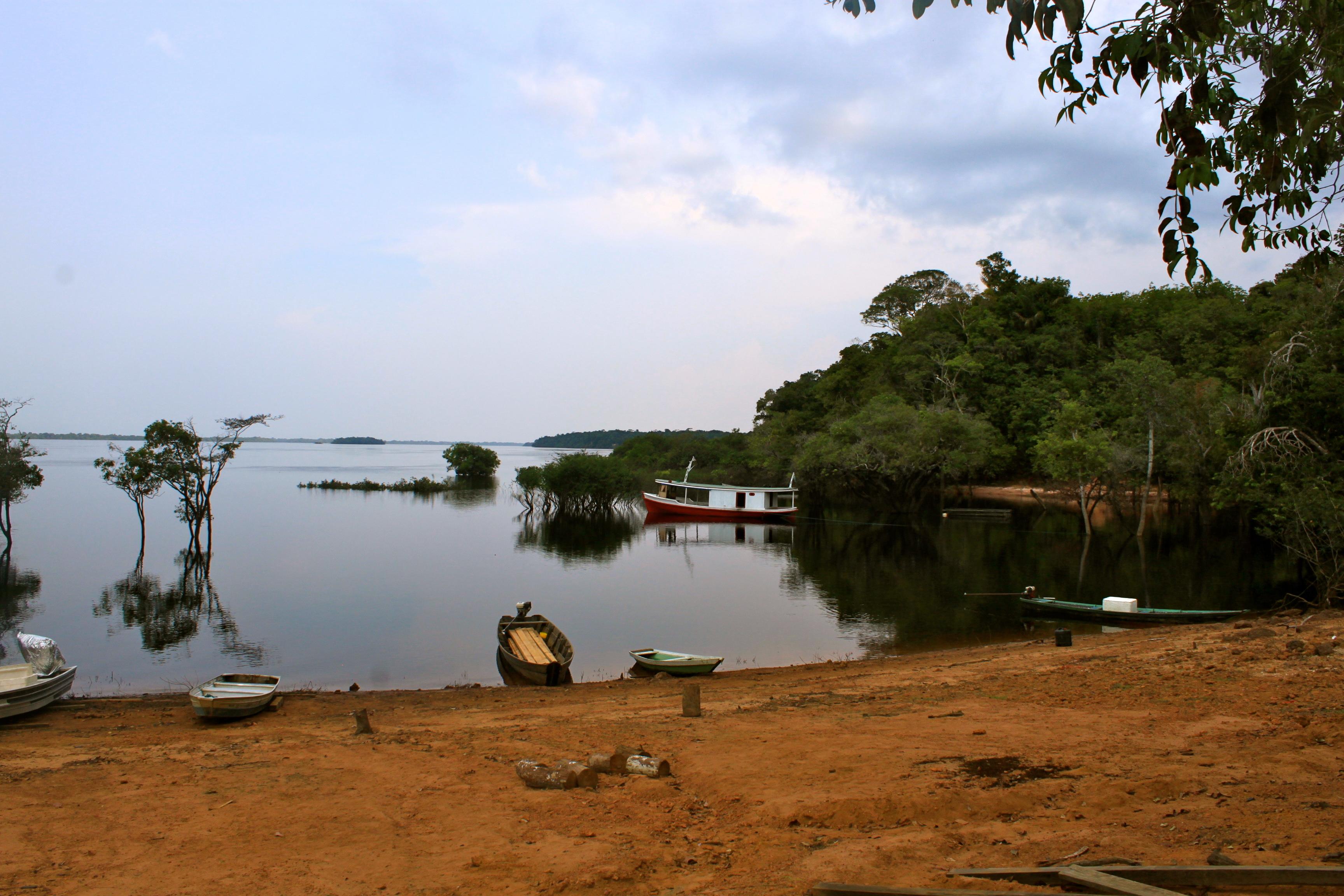 Amazon Rio Negro
