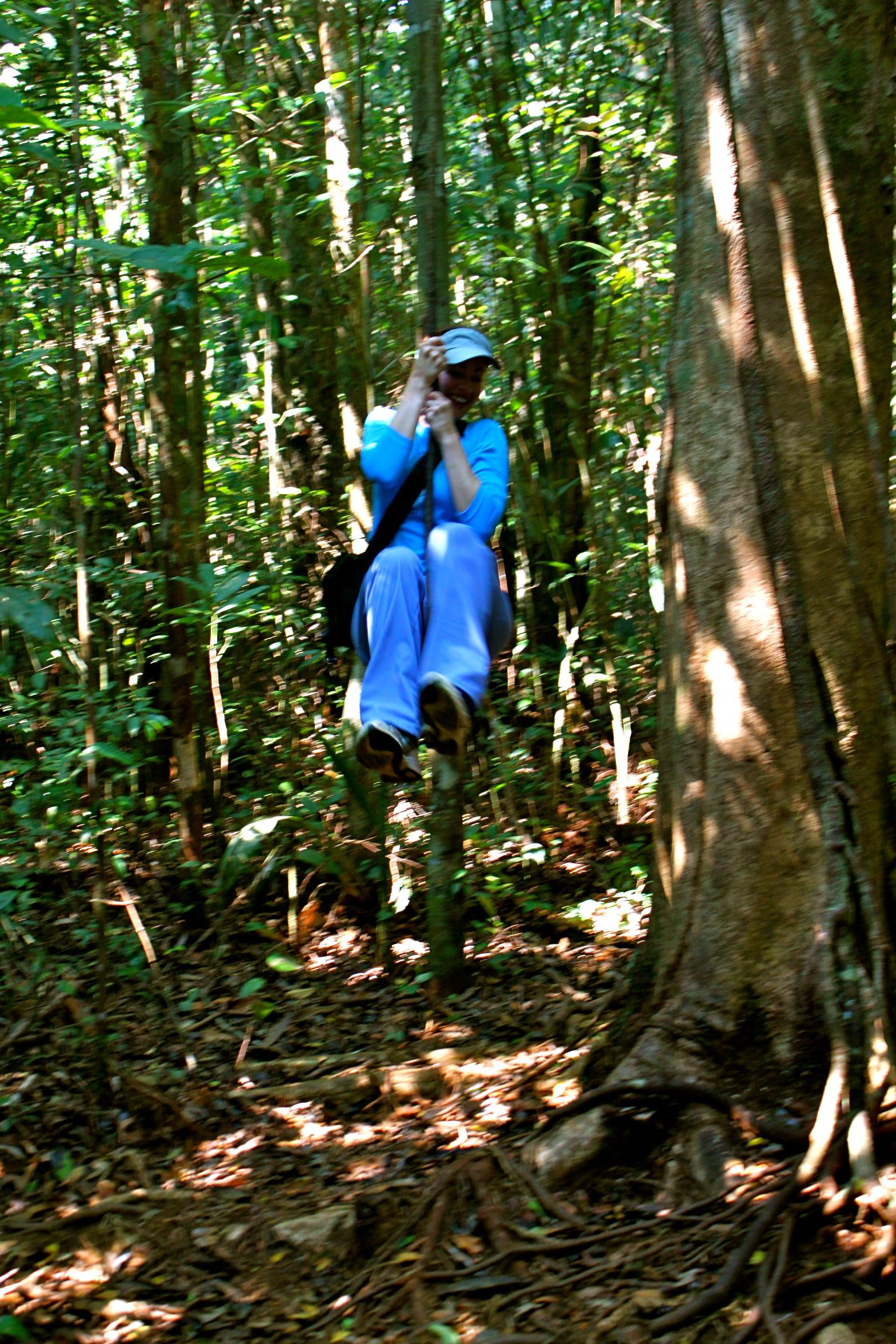 Swinging through the Amazon
