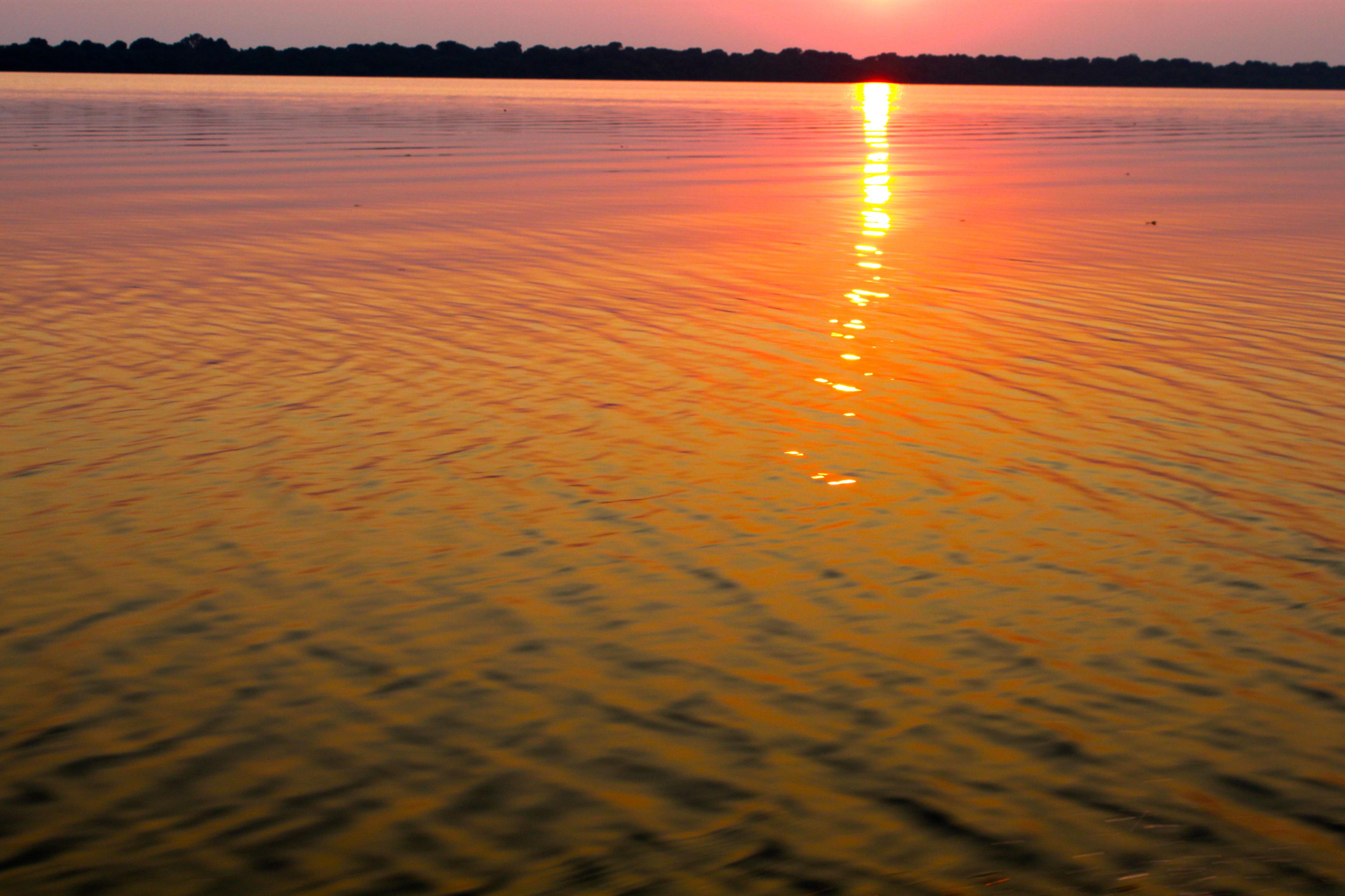 Sunrise in the Amazon