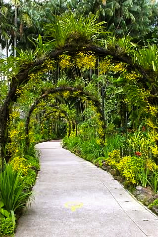 Arches in the Orchid Garden