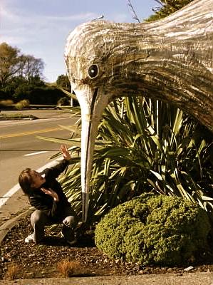Giant Kiwi Bird