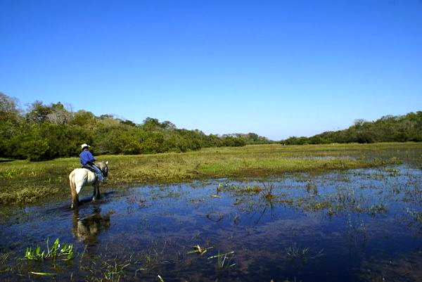 Bad-Ass Adolfo on his bad-ass horse.  Mysterious Foreshadow: there be caiman in those waters.