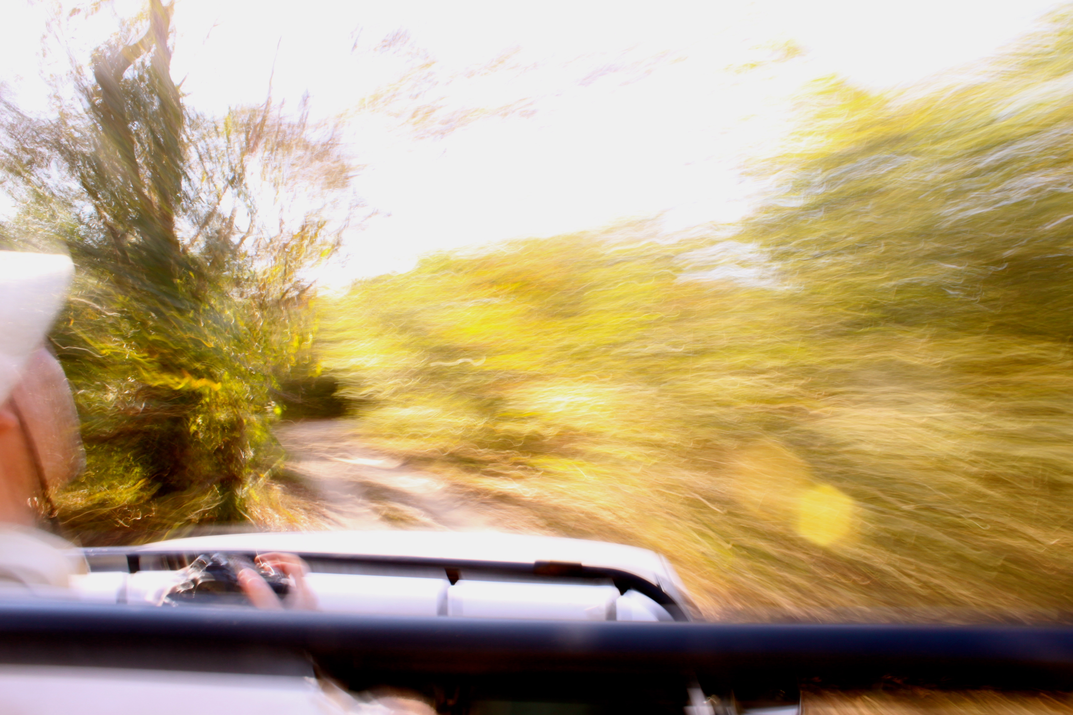 safari pantanal brazil embiara