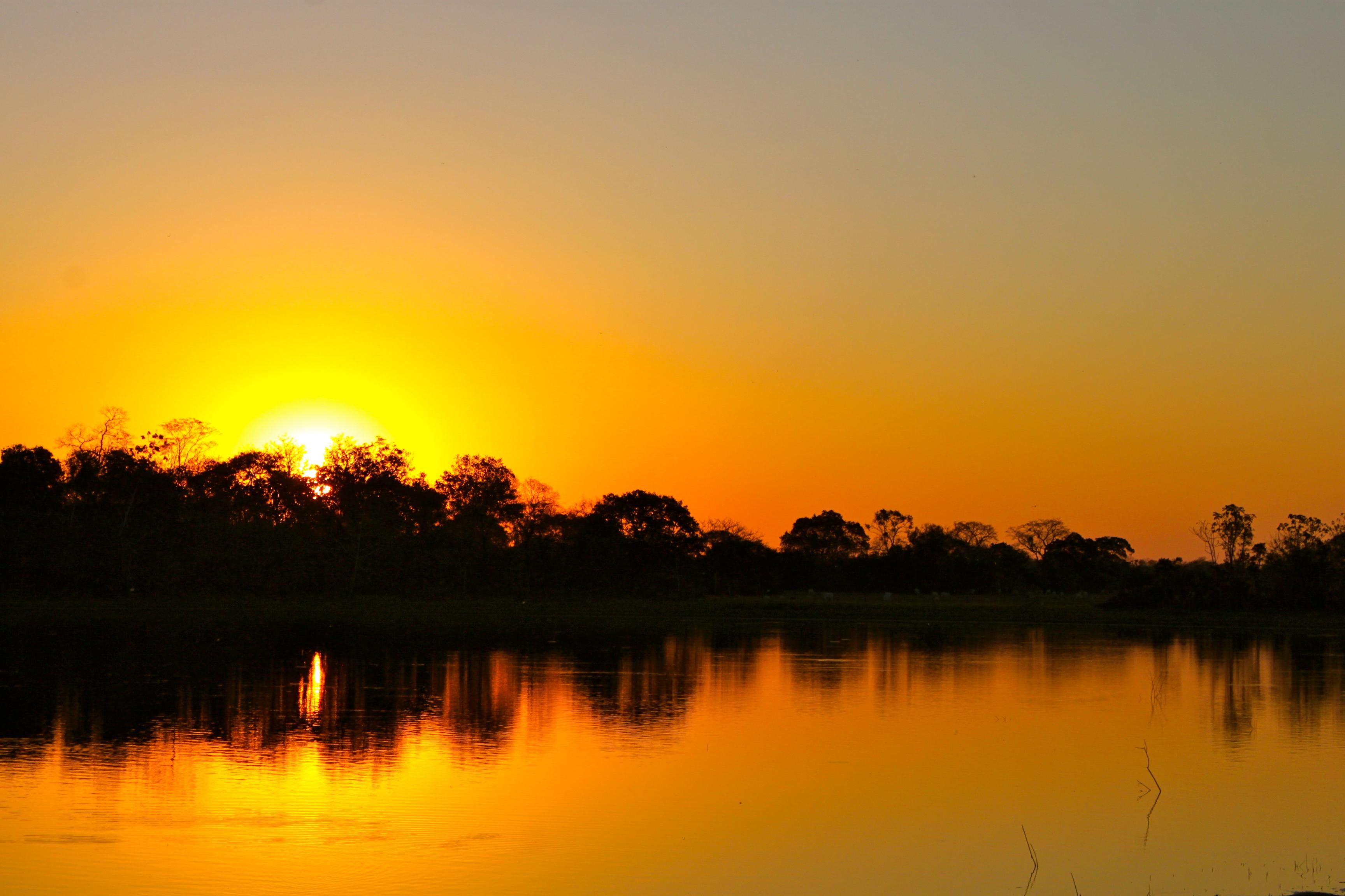 sunset pantanal brazil