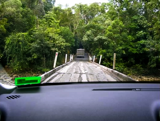cape tribulation road australia