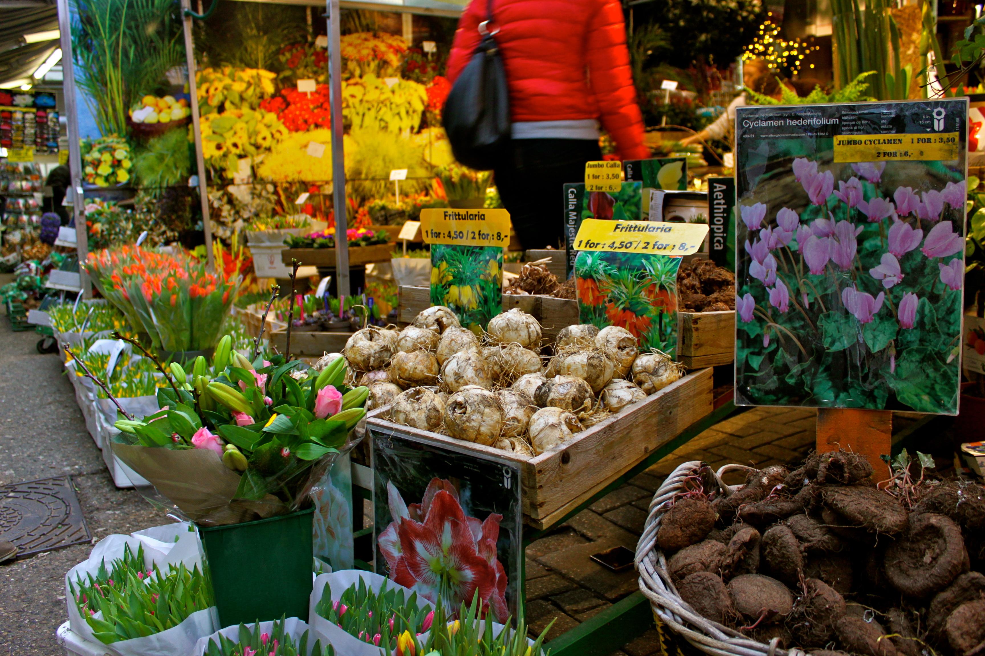 amsterdam netherlands flower market