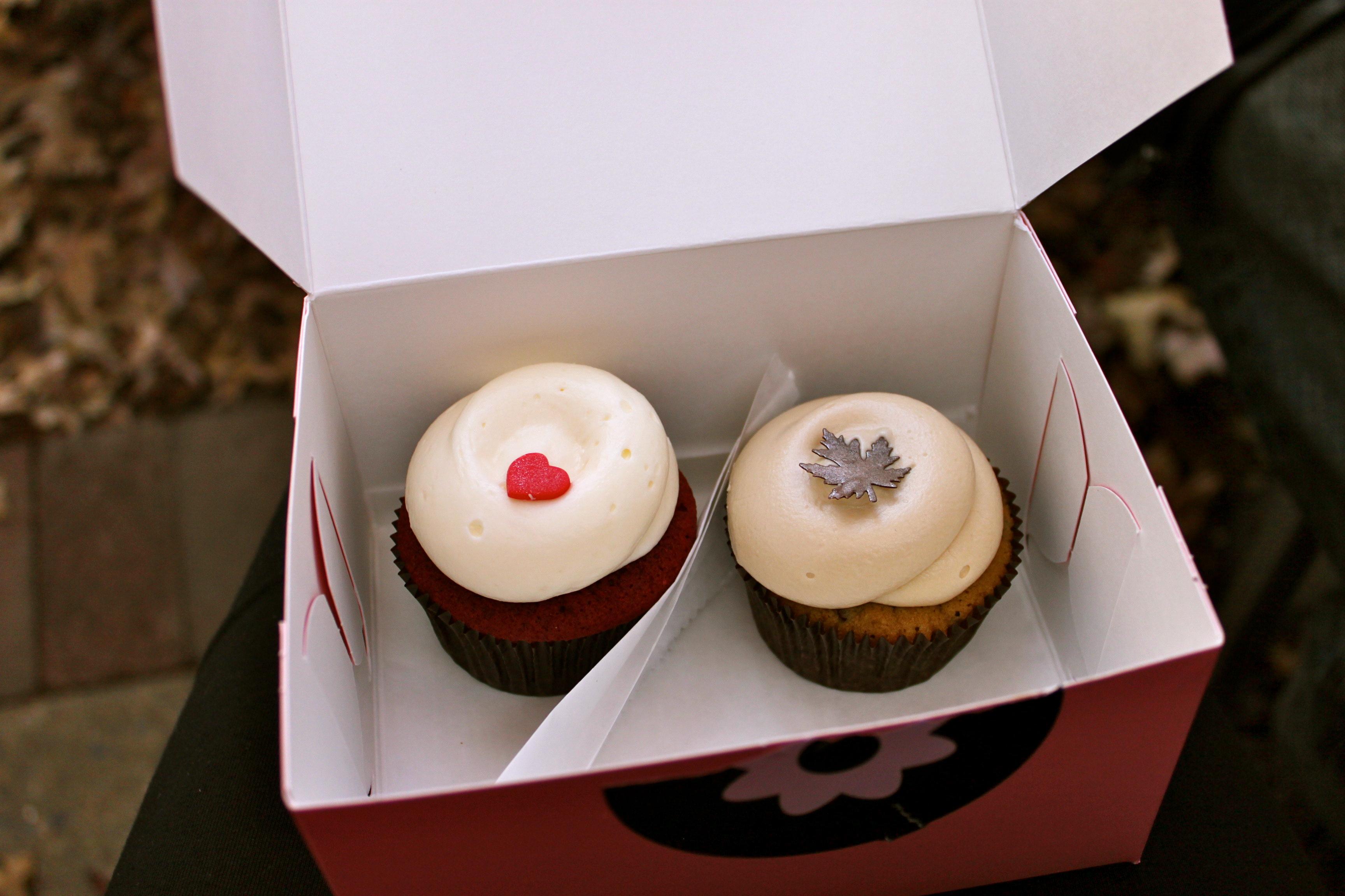 georgetown cupcakes dc tlc